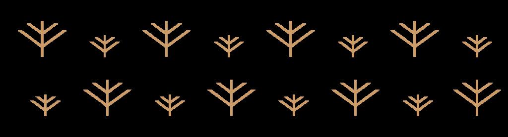 Wyld Pattern Web